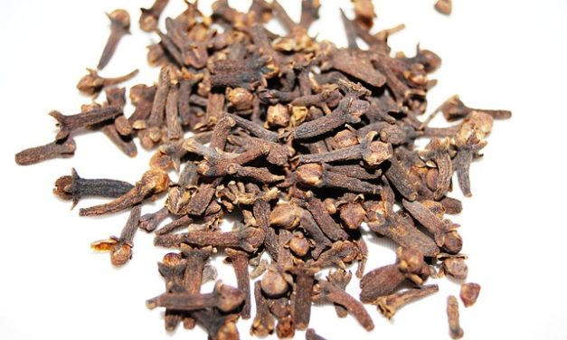 THE AWESOME HEALTH BENEFITS OF CLOVES
