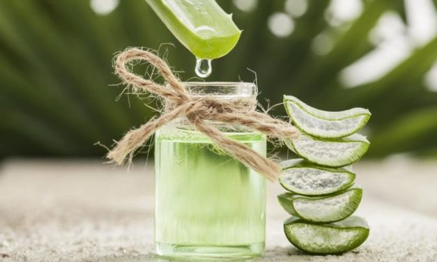 WHAT YOU NEED TO KNOW ABOUT ALOA VERA AND ALOA VERA JUICE FACTORY